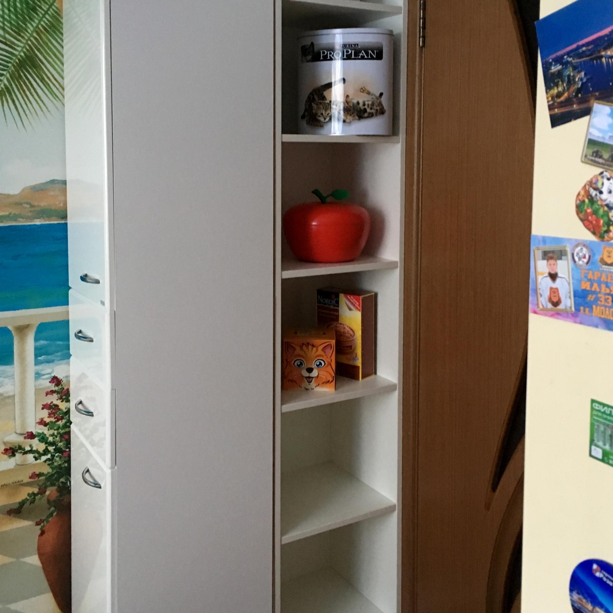 Узкий высокий шкаф в свободное пространство в углу
