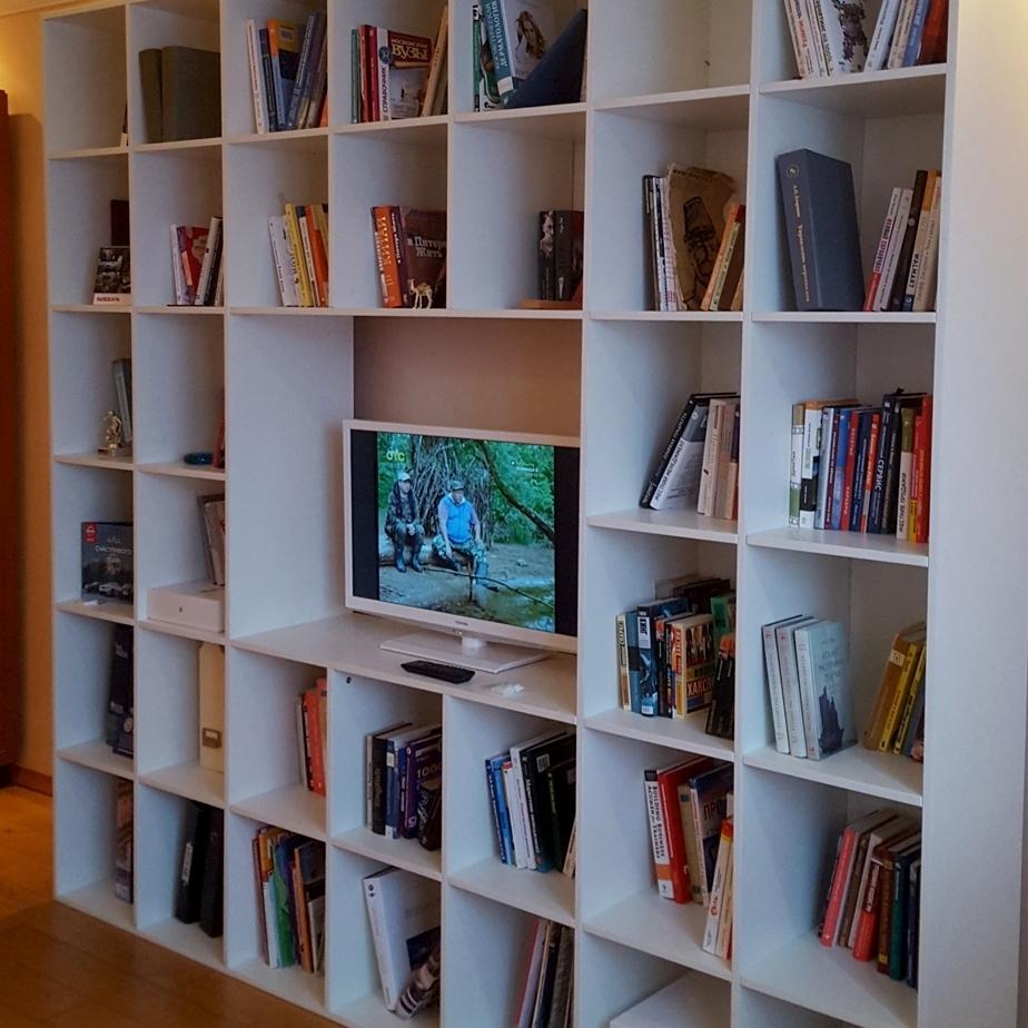 Шкаф для книг и телевизора в гостиную для Галины из Москвы