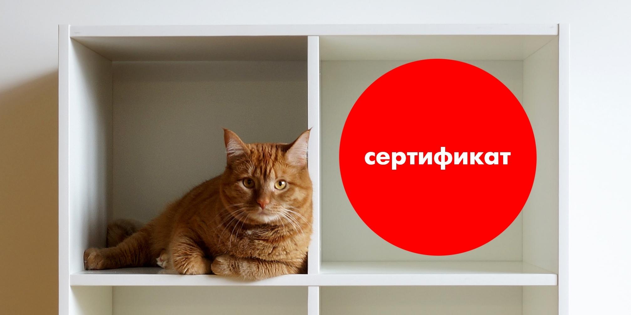 Внимание! Розыгрыш сертификата на 3000 рублей.